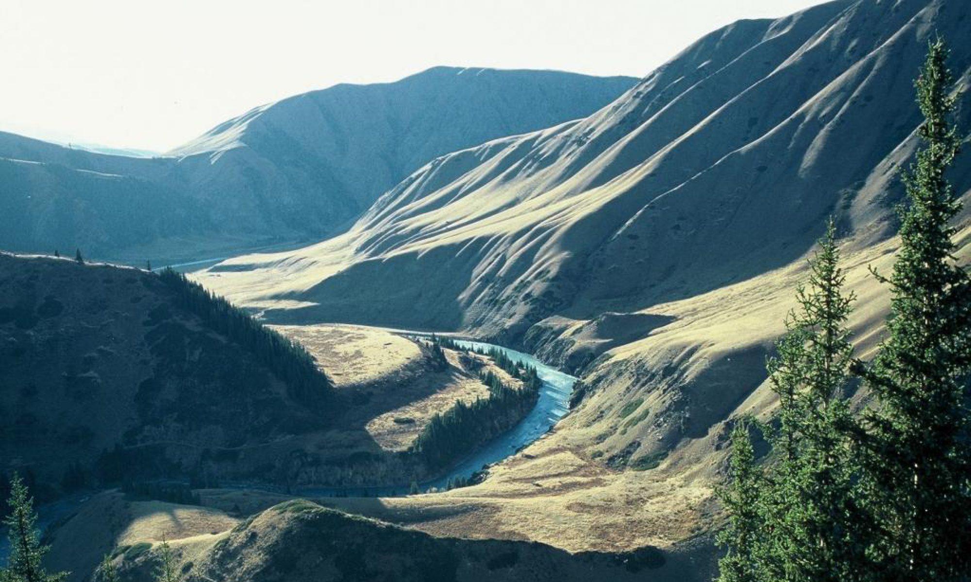 WILDLIFE EXPEDITIONS KYRGYZSTAN